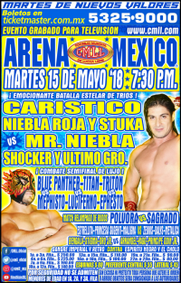 source: http://cmll.com/wp-content/uploads/2014/01/martess.jpg